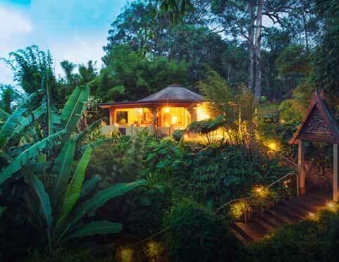 Luksusowe wycieczki - hotel w sercu dżungli