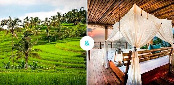 Bali + Sumba