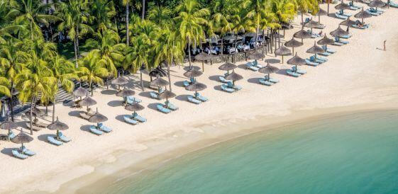 Plaża palmy widok z lotu ptaka