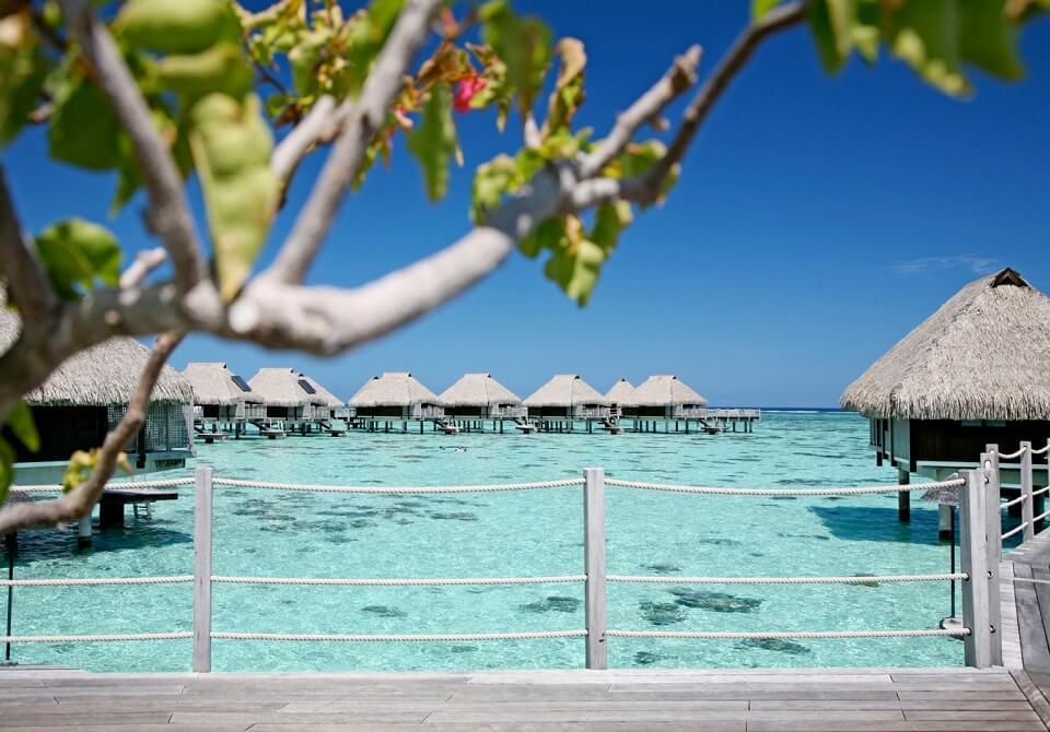 Polinezja Francuska, Moorea - Hilton Moorea Lagoon domy na wodzie