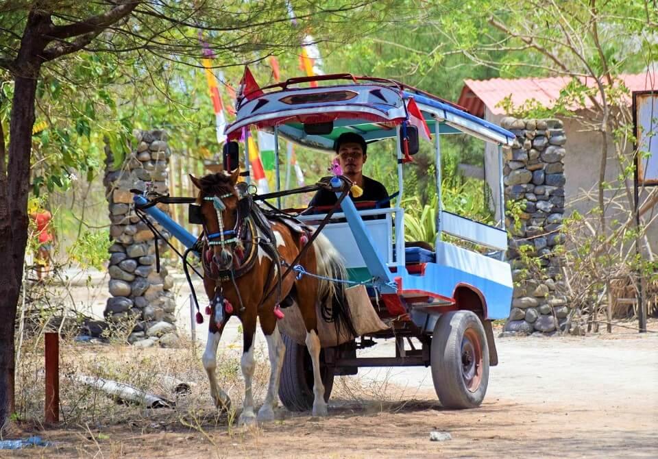 Koń ciągnie przyczepę Indonezja, wyspa Gili